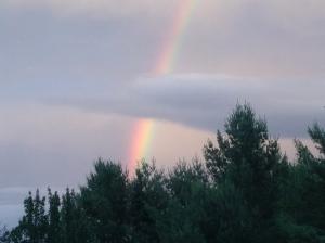 NH Rainbow